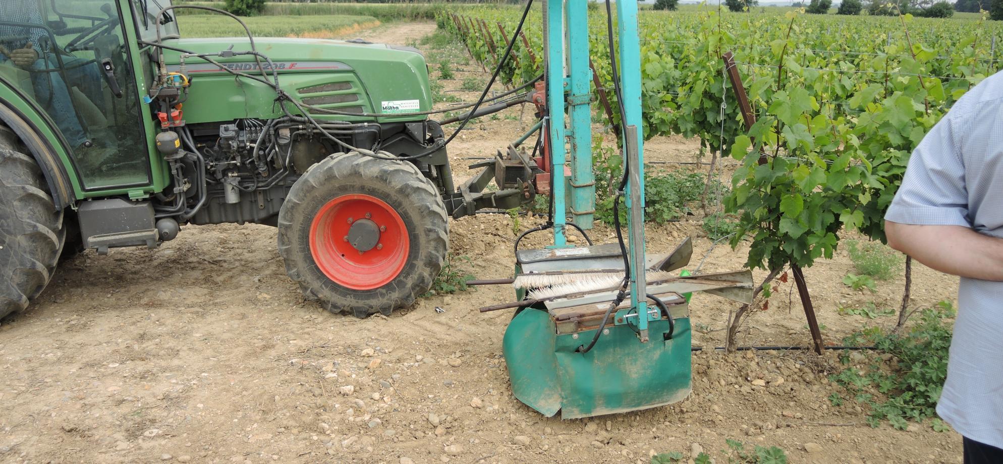 Epamprage chimique de vignes